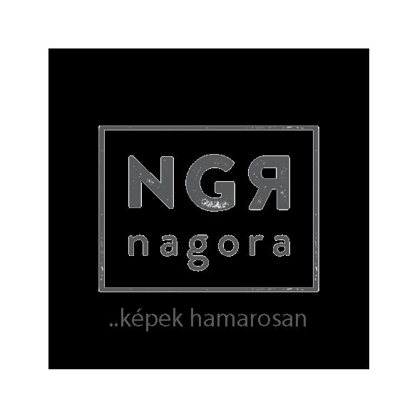 Faggyú-harmonizálás mesterfokon csomag kombinált / zsíros bőrre