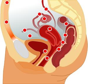 Endometriózis? Gyerekvállalási nehézség? Pajzsmirigy problémák? Felborult hormonháztartás?